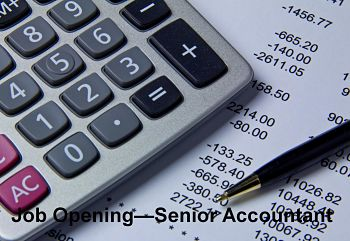 Senior Accountant jobs in UAE